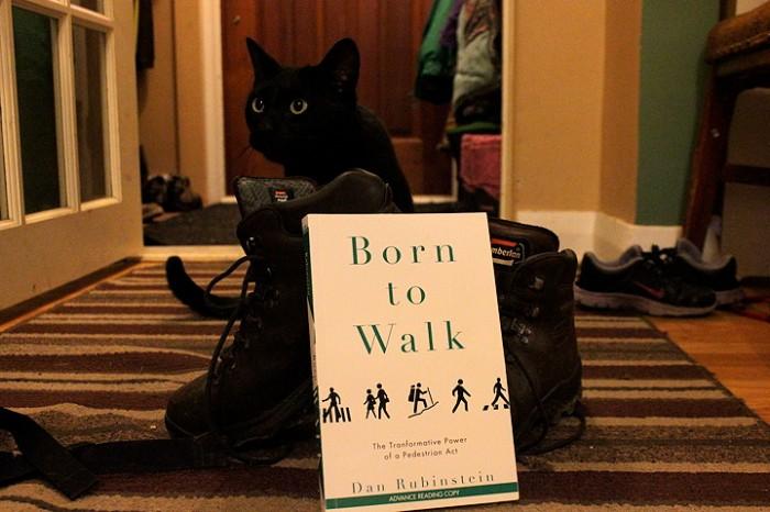 walk dan